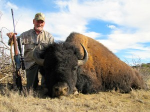 Jerry's Bison - Buffalo Hunts in Texas