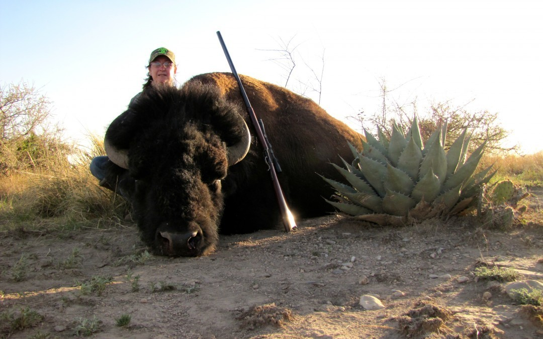 Bison Hunts in Texas – Success on Day 1