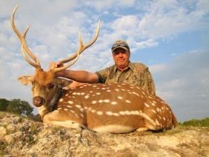 Exotics Bow Hunting in Texas - Axis Deer