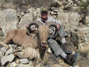 Aoudad Hunt Texas - Jeff's beautiful Aoudad